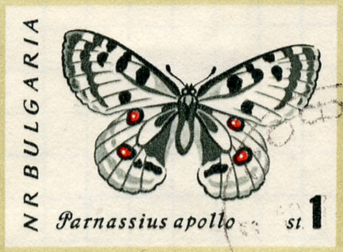 insect-stamps1